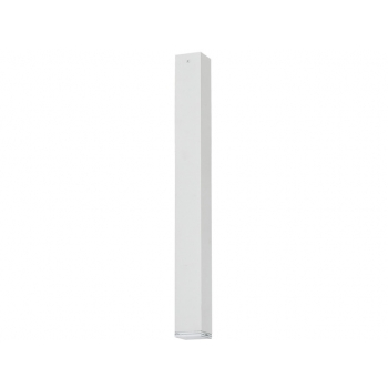 5707  BRYCE WHITE L